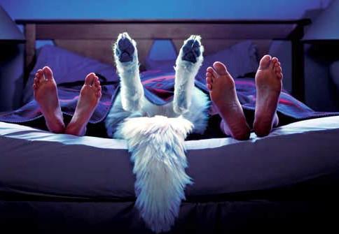 人妻3p内射_霸气小三与夫妻同睡一张床 网友:这世界真疯了