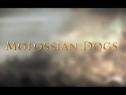《罗马2:全面战争》DLC预告-第1集