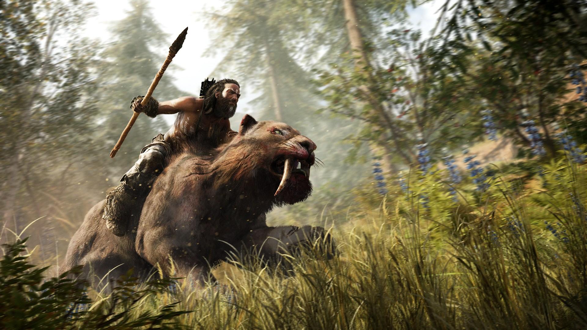 原始森林狼图片