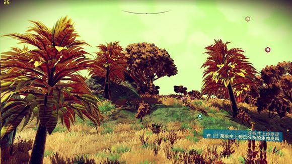树木的外表也不奇葩,很像地球植物.